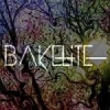 Bakelite  - Bakelite 003 mixed by Logarythm (Psydub/Ambient) 2016 - last post by Bakelite